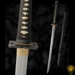 Iga-Ninja-to-hanwei-sword